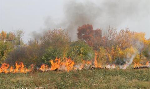 Пожар над Свети Влас