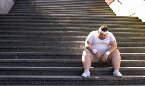 4 зодии дебелеят на поразия