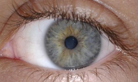 Много хора с очни травми от косачки