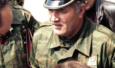 Присъдата на Ратко Младич: Ще преосмисли ли Сърбия собствената си отговорност?