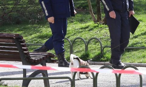 Младежи с кучета сътвориха див скандал в парк в Бургас