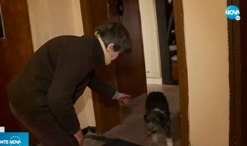 Медсестрата и кучето ѝ, което скочи от 11-я етаж са отново заедно