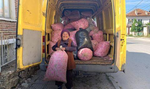 Започва кампания за спасяване на розопроизводителите - 1