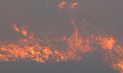 Потушиха голям пожар над Варна
