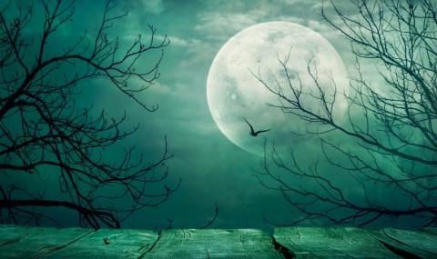 """Наблюдаваме """"Синя луна"""