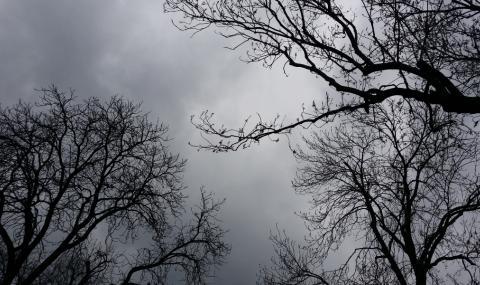 Облачна и дъждовна неделя