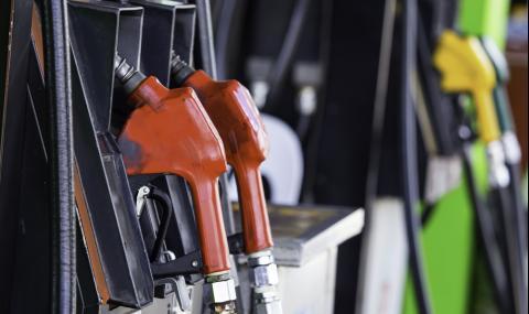 Цената на горивата замръзва