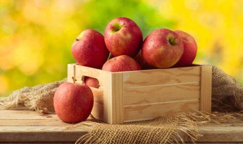 Така ябълките ще останат свежи цяла зима - 1