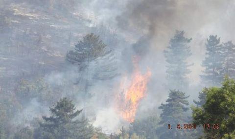 Частично бедствено положение във Велинград заради разрастващите се пожари - 1