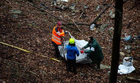 Поредно нерегламентирано сметище до Пловдив бе почистено от доброволци