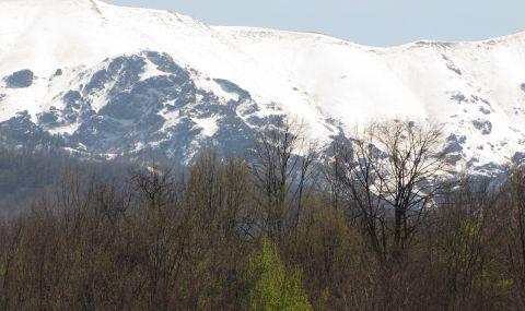 Турист загина край връх Жълтец