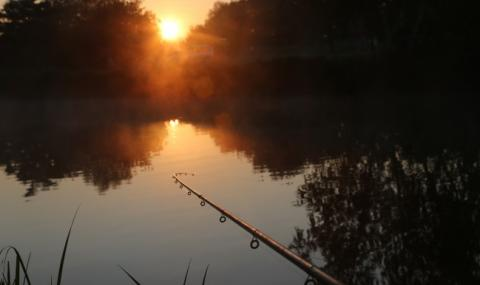 Рибарски истории: Тази година комарите са като птеродактили