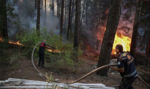 ЕК изпраща три самолета за гасене на пожари в Турция - 1