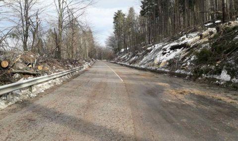 Спряха процедурата за екологична оценка на тунела под Петрохан