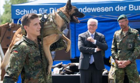 Обучават армейски кучета да надушват коронавирус