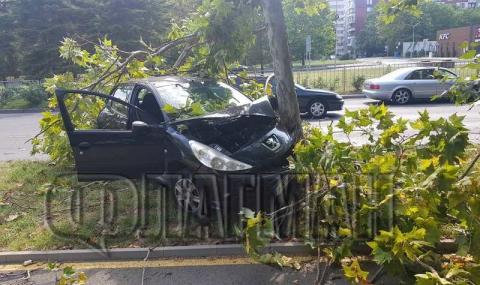 Младеж и приятелката му се забиха в дърво с колата си, откараха ги с линейка