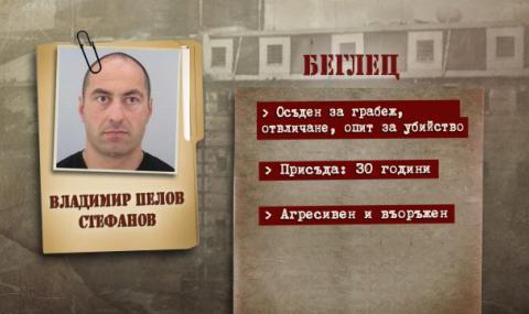 Как е бил убит Владимир Пелов