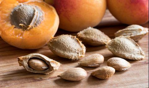 Ядките на тези плодове могат да ви убият