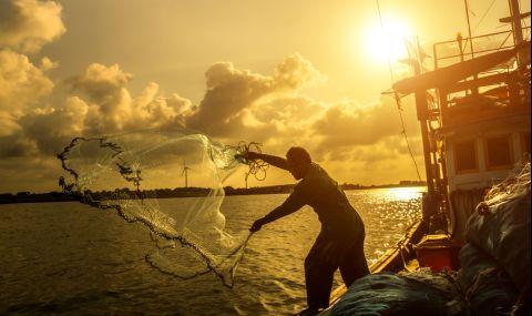 Неочакван улов препълни мрежите на рибарите от Бургаско - 1