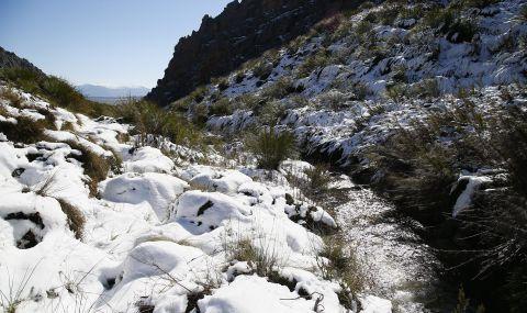 Сняг и студ в Южна Африка - 1