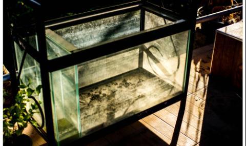 Мъж потроши 5 аквариума с гаечен ключ и уби 400 рибки