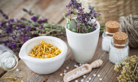 Хомеопатия и алтернативна медицина - опасни или полезни?