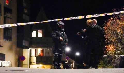Мъж уби петима в Норвегия в серия от атаки - 1