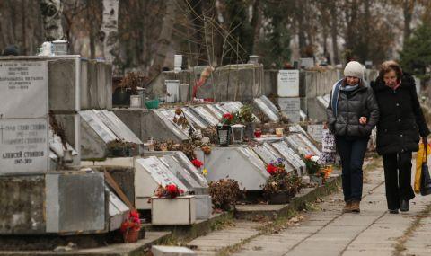 Контрера: Циганската мафия вече официално управлява гробищата в София