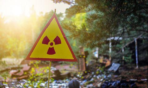 """Аварията във Фукушима е """"родила"""" странно животно - 1"""