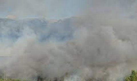 Локализираха пожара край Полска скакавица - 1