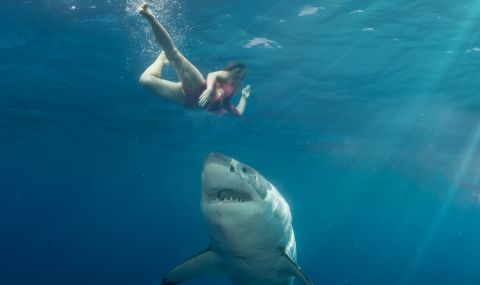 Акула изяде приятелите ми: ужасяващата история на оцеляла след брутална атака (ВИДЕО)