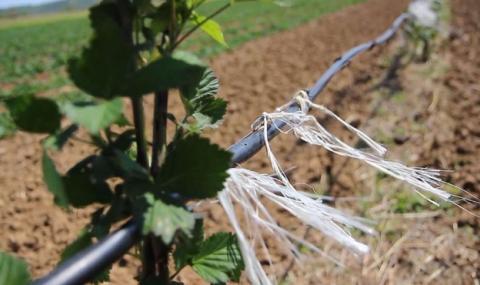 100 млн. лв. за фермерите заради COVID-19
