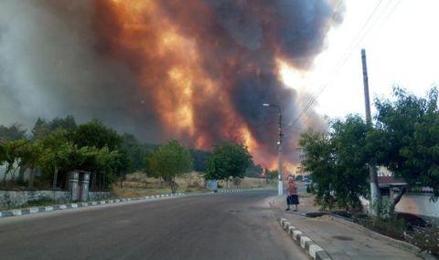 Огромен пожар край Старосел - 1