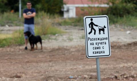 На първо четене: 1000 лева глоба за куче без намордник