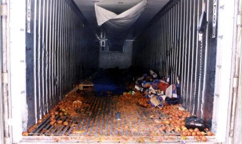 Откриха мигранти в хладилен контейнер на ферибот