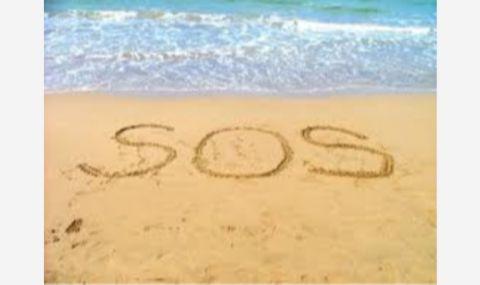 SOS за любимите на медиите политолози