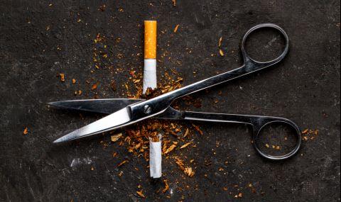 10 храни чистят никотина от тялото