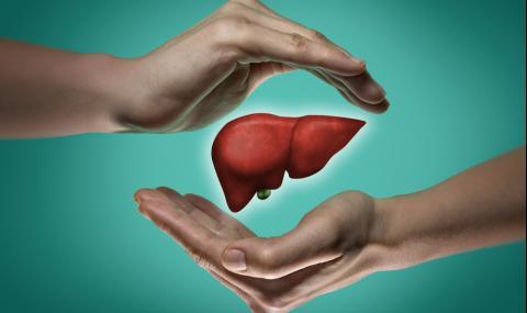 Посочиха храните, които увреждат черния дроб
