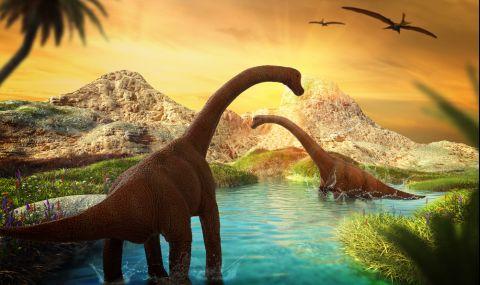 Откриха нов динозавър, смятан за най-големия в света (СНИМКИ)