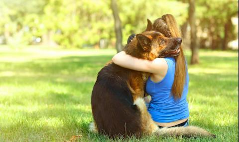 Момиче направи фотосесия с кучето си, но стана страшно (СНИМКИ)