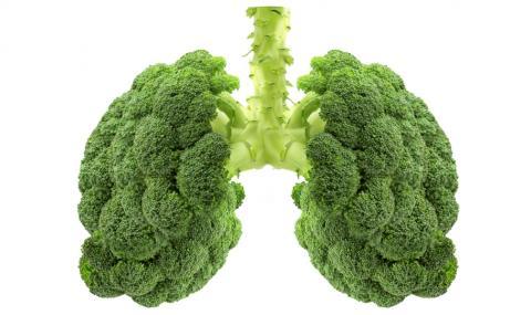 Храни, които пазят от дихателни заболявания