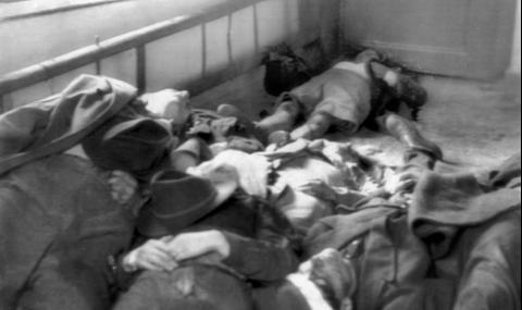 23 октомври 1956 г. Въстанието в Унгария