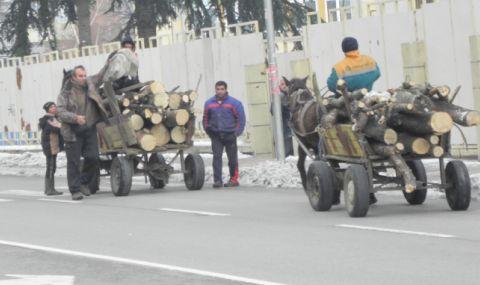 Война между цигани и горски служители, село Зимница е под полицейска обсада