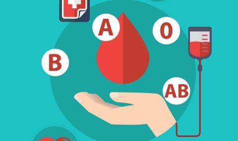 Кръвната група определя съдбата ви