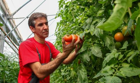 Български сезонни работници ще работят в Германия