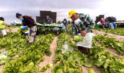 ЕС с голяма подкрепа за фермерите