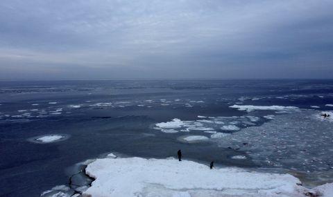 Руски биолози възкресиха замръзнал червей на 24 000 г.