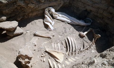 Oткриха 110 древни гроба в делтата на Нил