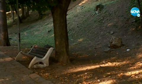 Какви са версиите за смъртта на жена в столичен парк