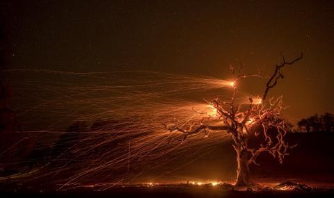 Калифорния си отдъхна! Загасиха пожара на годината